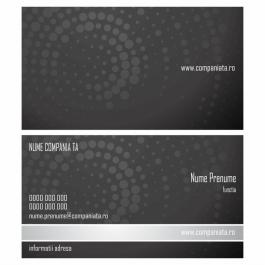 Model carti de vizita EK 20091