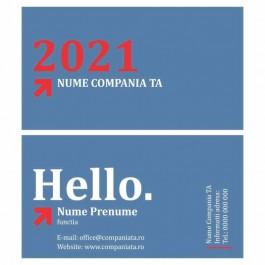 Model carti de vizita EK 20126
