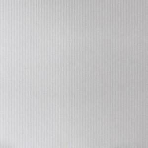 CARTI VIZITA CARTON ASTROSILVER 220g CANNETE CS022207156